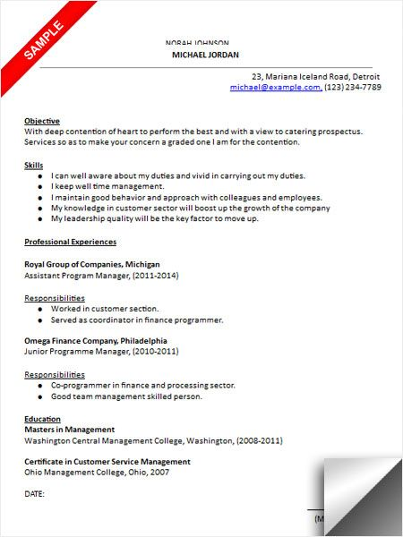 Program Manager Resume Sample Resume Examples Pinterest - program manager resume sample