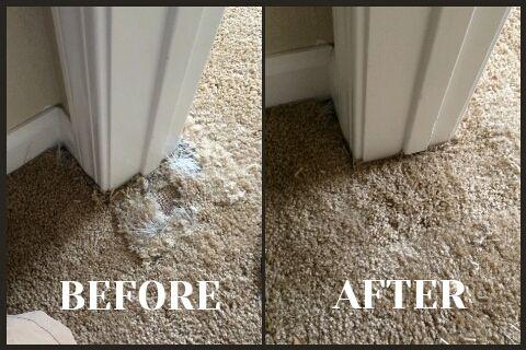 Pin By Carolina Flooring Services On Gg Home Carpet Tiles Indoor Outdoor Carpet