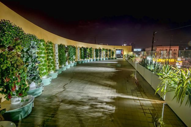 Stepping Up For The Homeless Of Los Angeles Urban Farming Tower Garden Vertical Farming