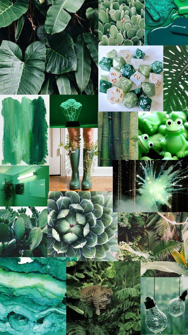 green aesthetic background aesthetic background