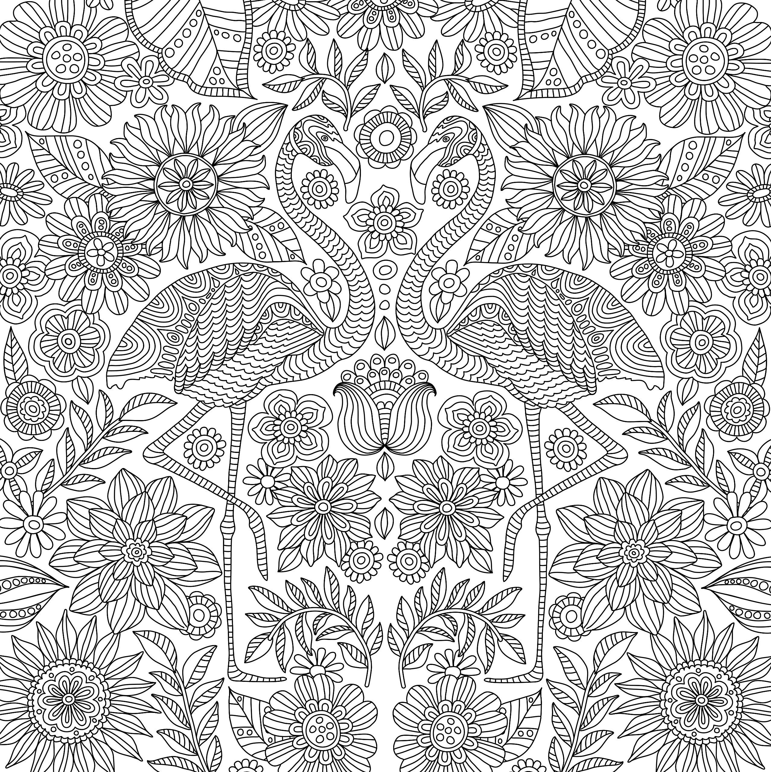 Blooms Birds And Butterflies Adult Coloring Book 31 Stress Relieving Designs Studio Series Art Coloring Books Animal Coloring Books Mandala Coloring Pages [ 2560 x 2555 Pixel ]
