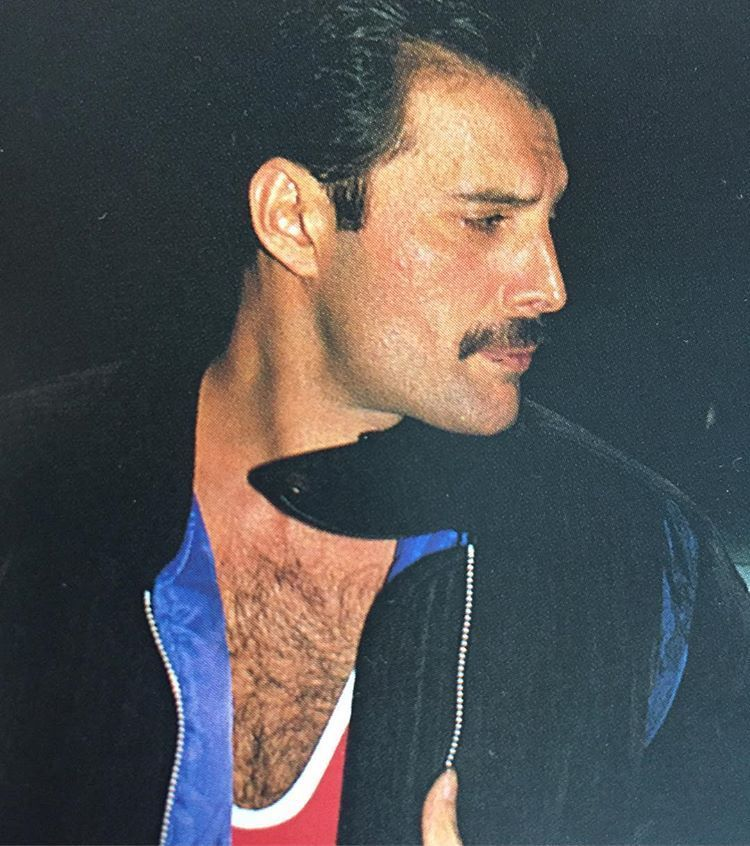Pin By Isobel On Isobel May Ledden In 2019: Freddie Mercury In 2019