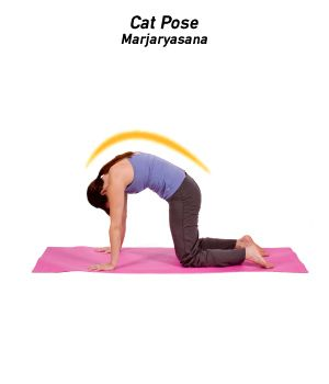 yoga for low back pain  isport  ejercicios para