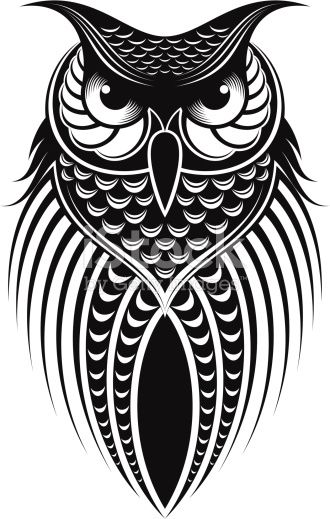 Owl Illustration White Bird Tattoos Owls Drawing Bird Drawings