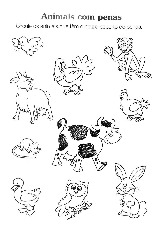 130 Atividades De Alfabetizacao Infantil Prezinho E Maternal