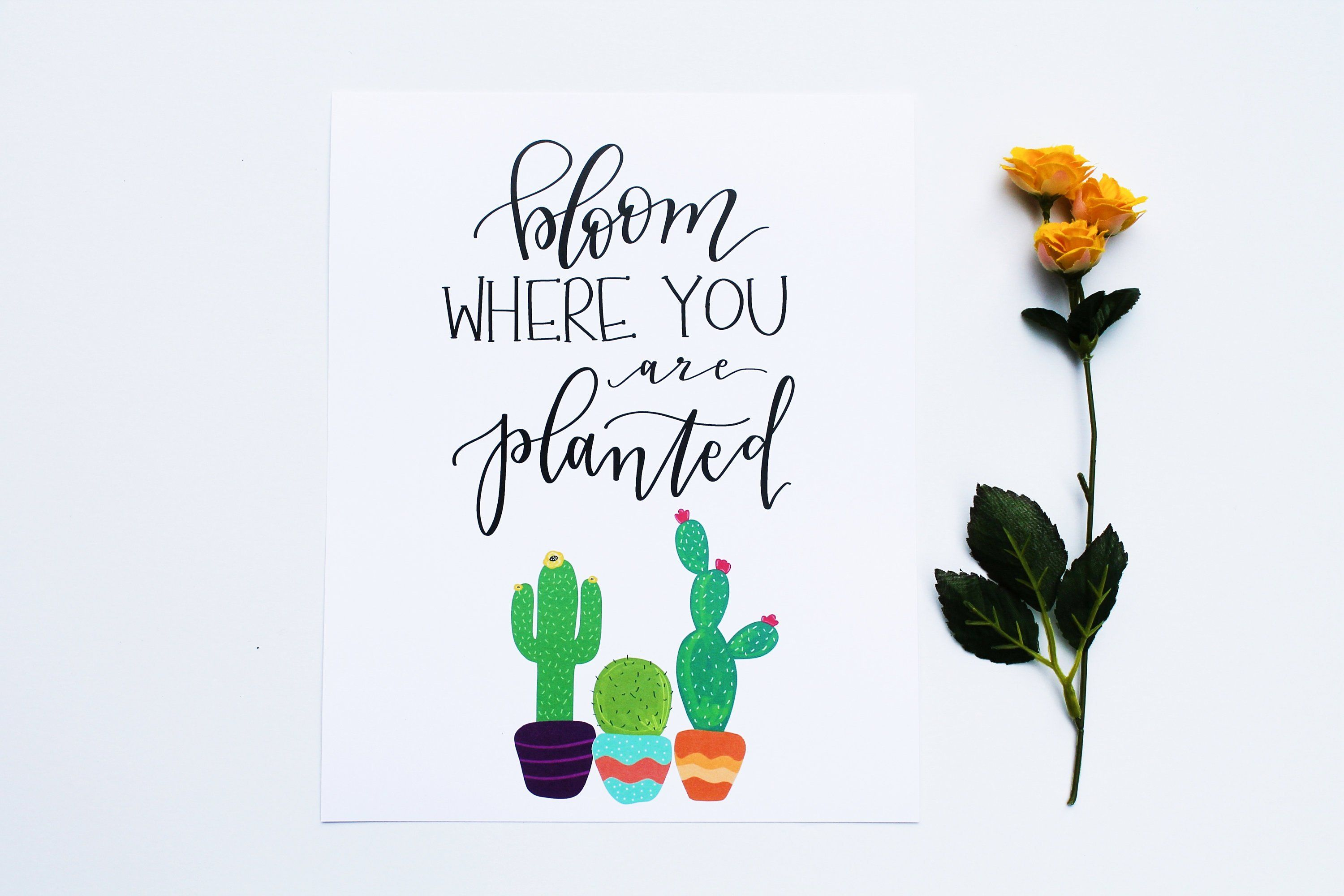 Bloom Where You Are Planted Succulents Cactus Nursery Print Garden Ideas Bloom Where You Are Planted Succulents Nursery Prints