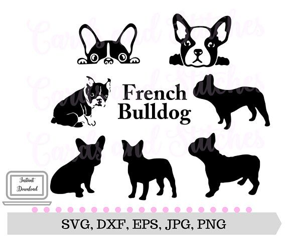 Silhouette Cameo AI etc. for Cricut png French Bulldog Bundle 3 includes SVG dxf; 300dpi Printable eps