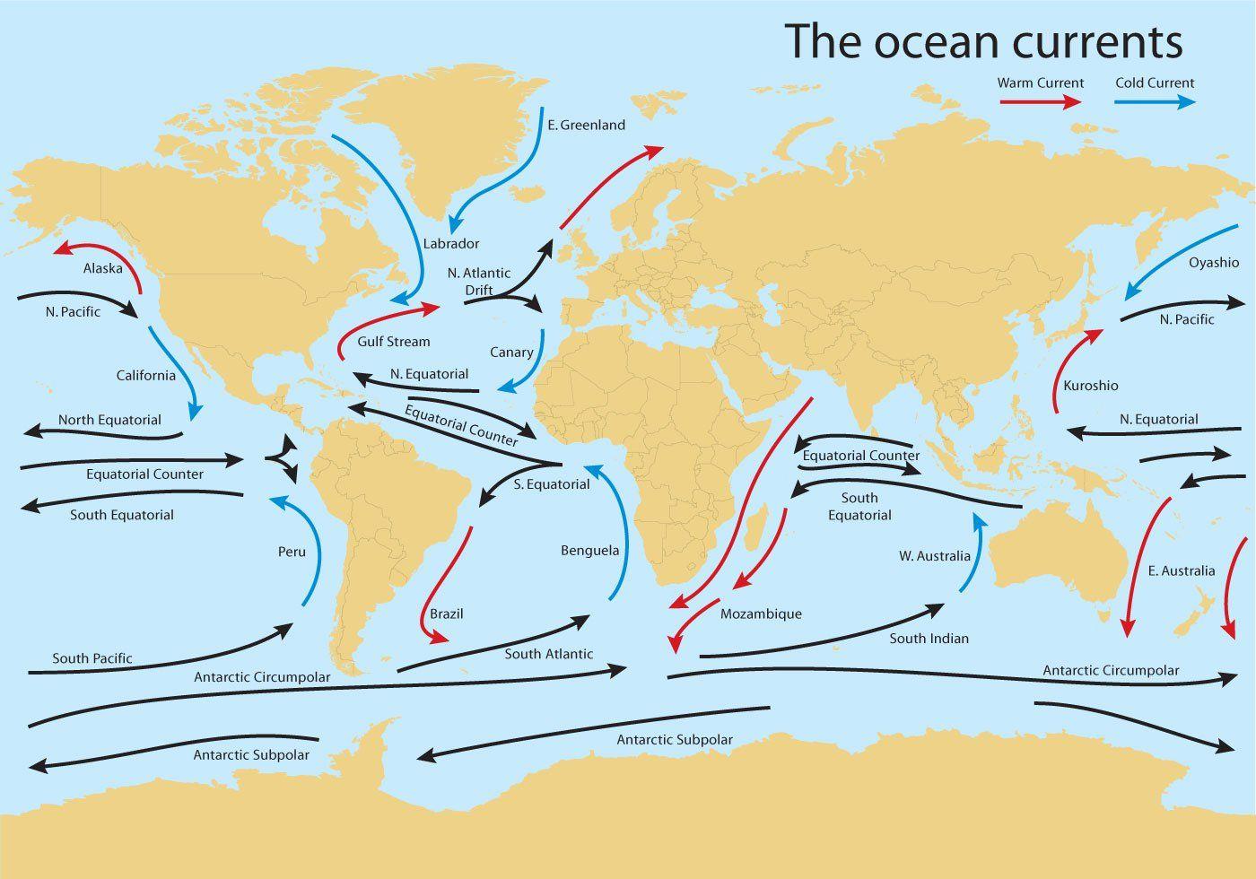 Ocean Current Worldmap Vector in 2019 | Ocean current, Ocean ...