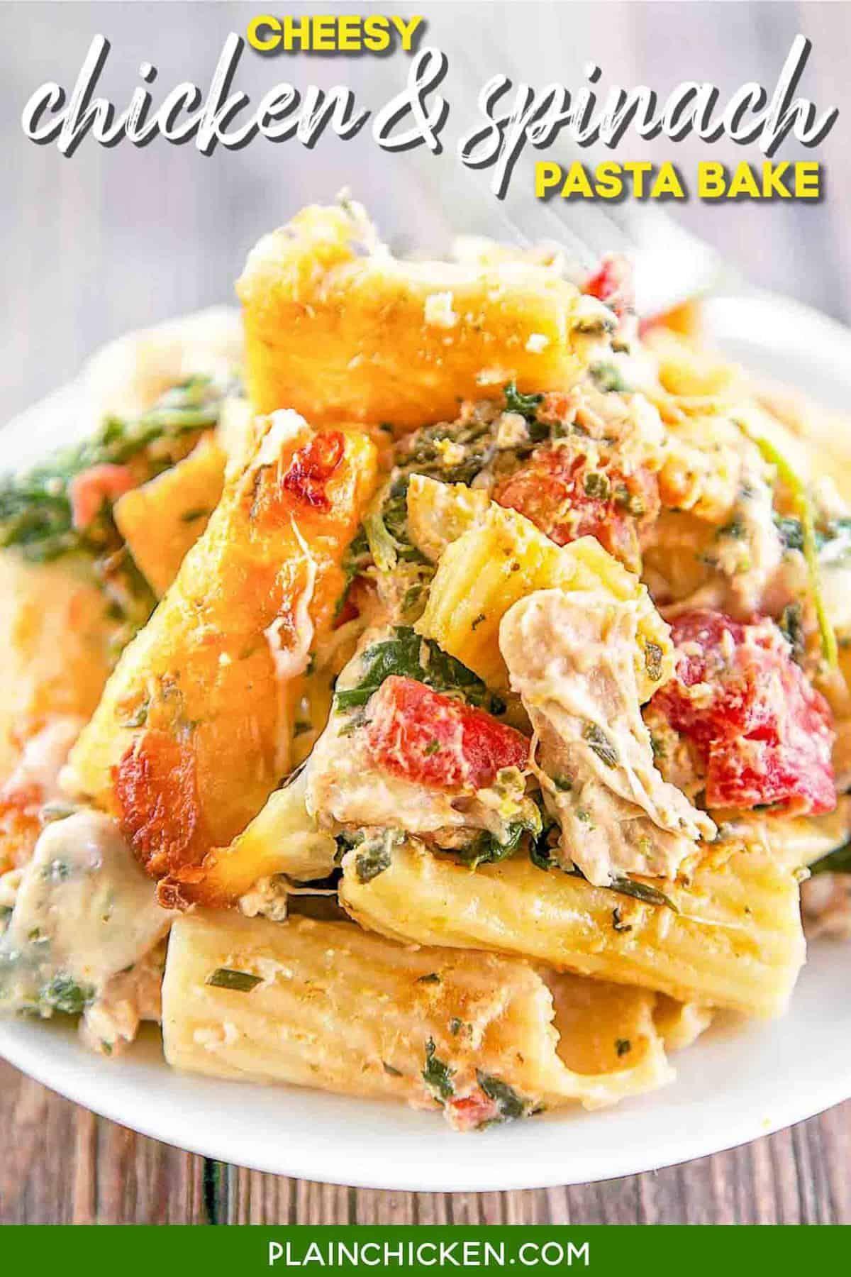 Cheesy Chicken And Spinach Pasta Bake Pasta Onion Spinach Chicken Tomatoes Chive And Onion In 2020 Quick Chicken Recipes Plain Chicken Recipe Spinach Pasta Bake