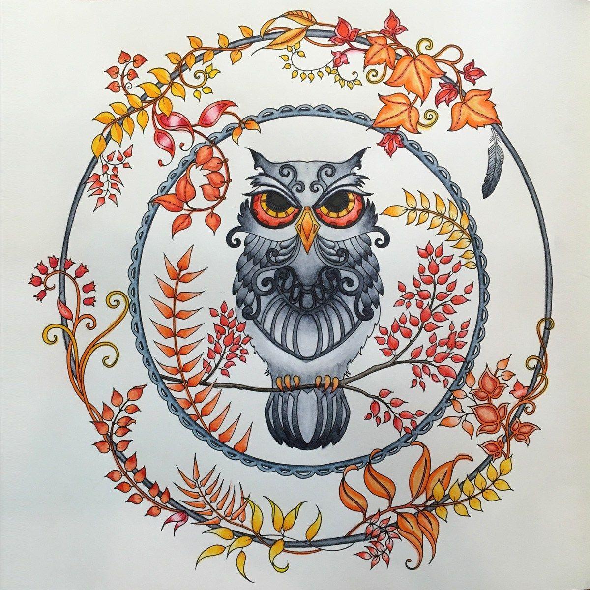 Enchanted Forest Owl Kleuren