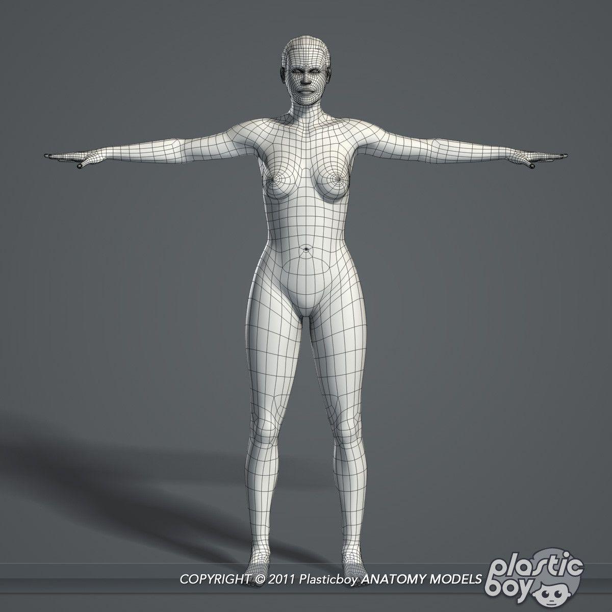 Obj Complete Female Anatomy Mi Casa Pinterest Anatomy Female