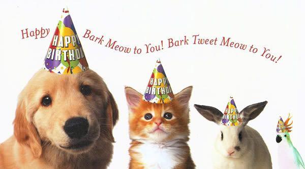 Animal Lovers Paradise Parabens Happy Birthday Animals