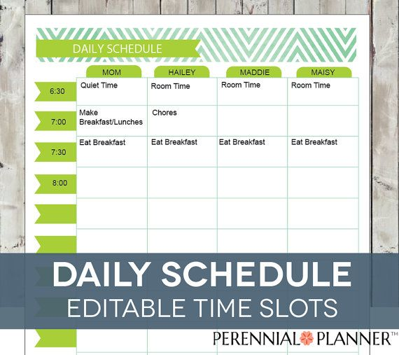 Daily Schedule Hourly Printable Editable, Planner For Moms