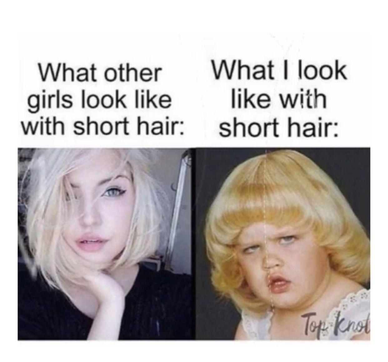 Pin By Victoria Rivera On Humor Hair Meme Short Hair Styles Hair Humor