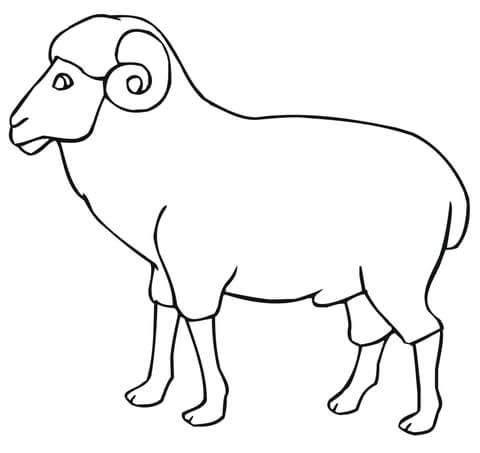 Ram Outline Coloring Page Coloring Pages Sheep Outline Church Crafts