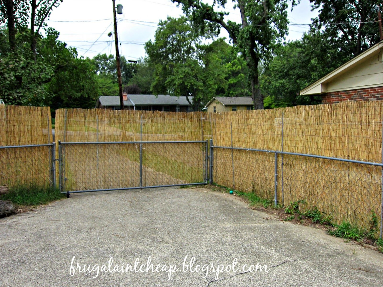 Chain Link Fence Project With Images Chain Link Fence Bamboo