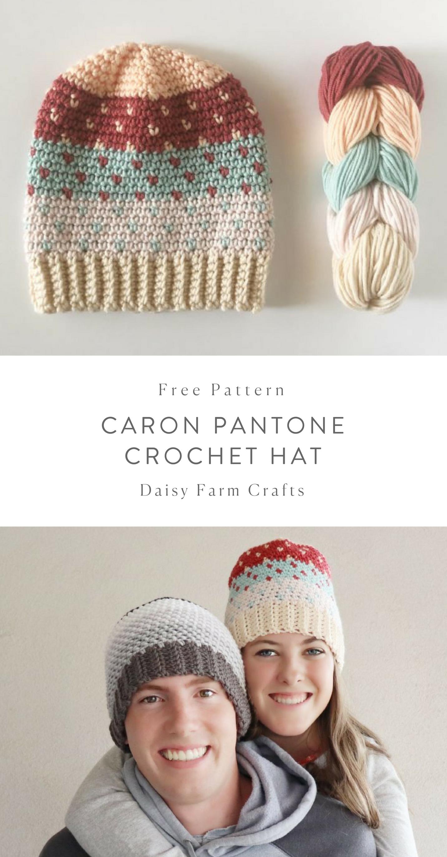 Free Pattern - Caron Pantone Crochet Hat #crochet | Crochet ...