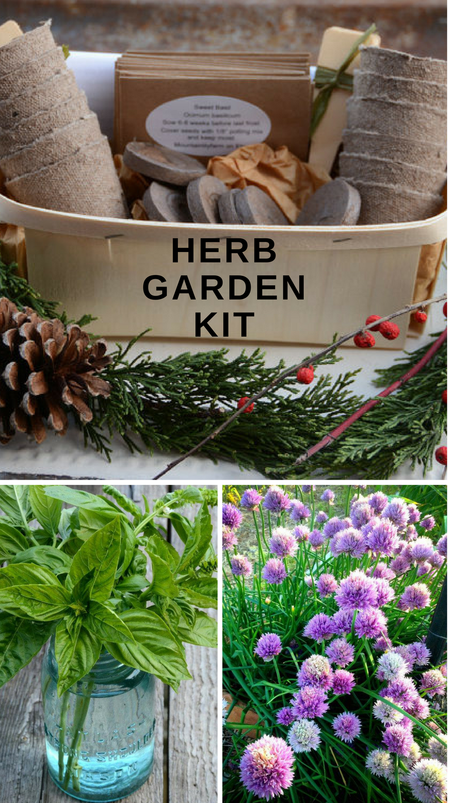 Herb garden kit. Love the flavors fresh herbs deliver