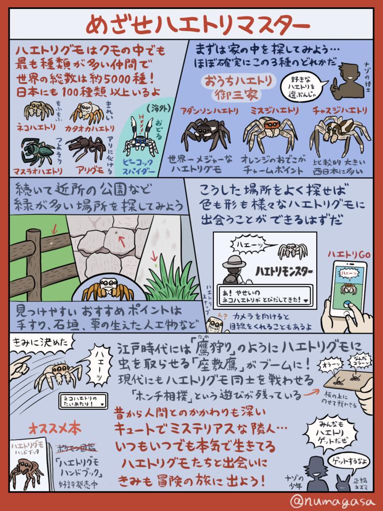 ハエトリグモ ホームカミング Living Thing Pinterest Animales と Montajes