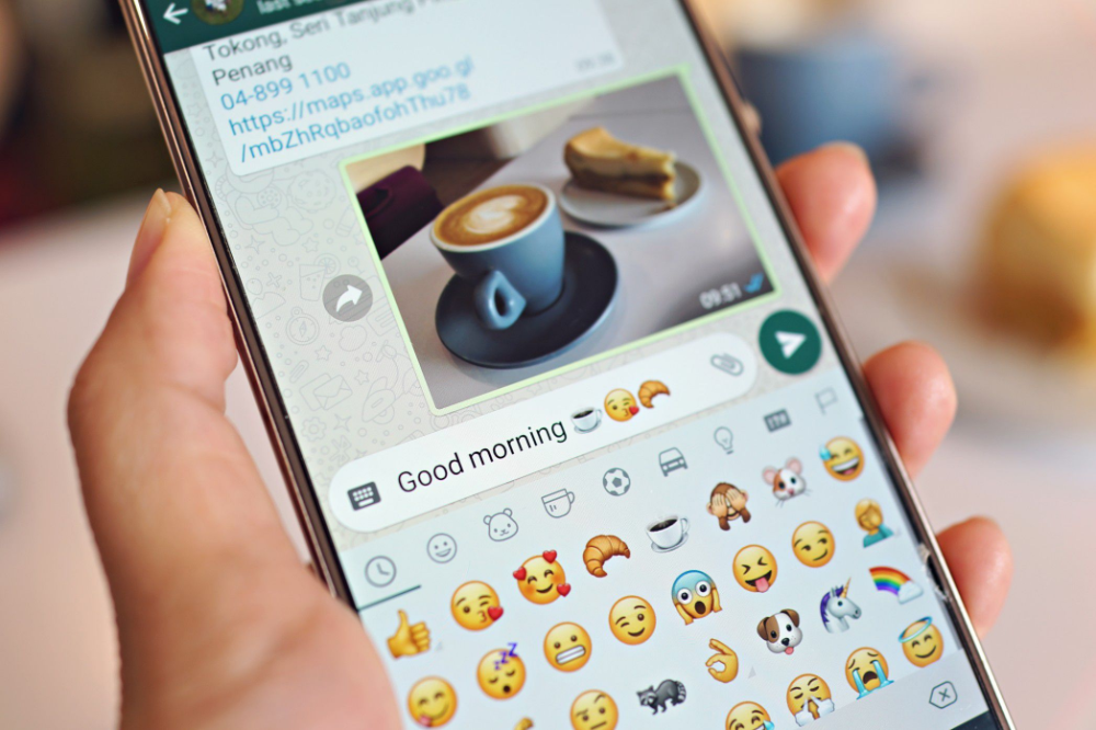 How To Track Your Messages With Whatsapp Check Marks Your Message Messages Message Thread
