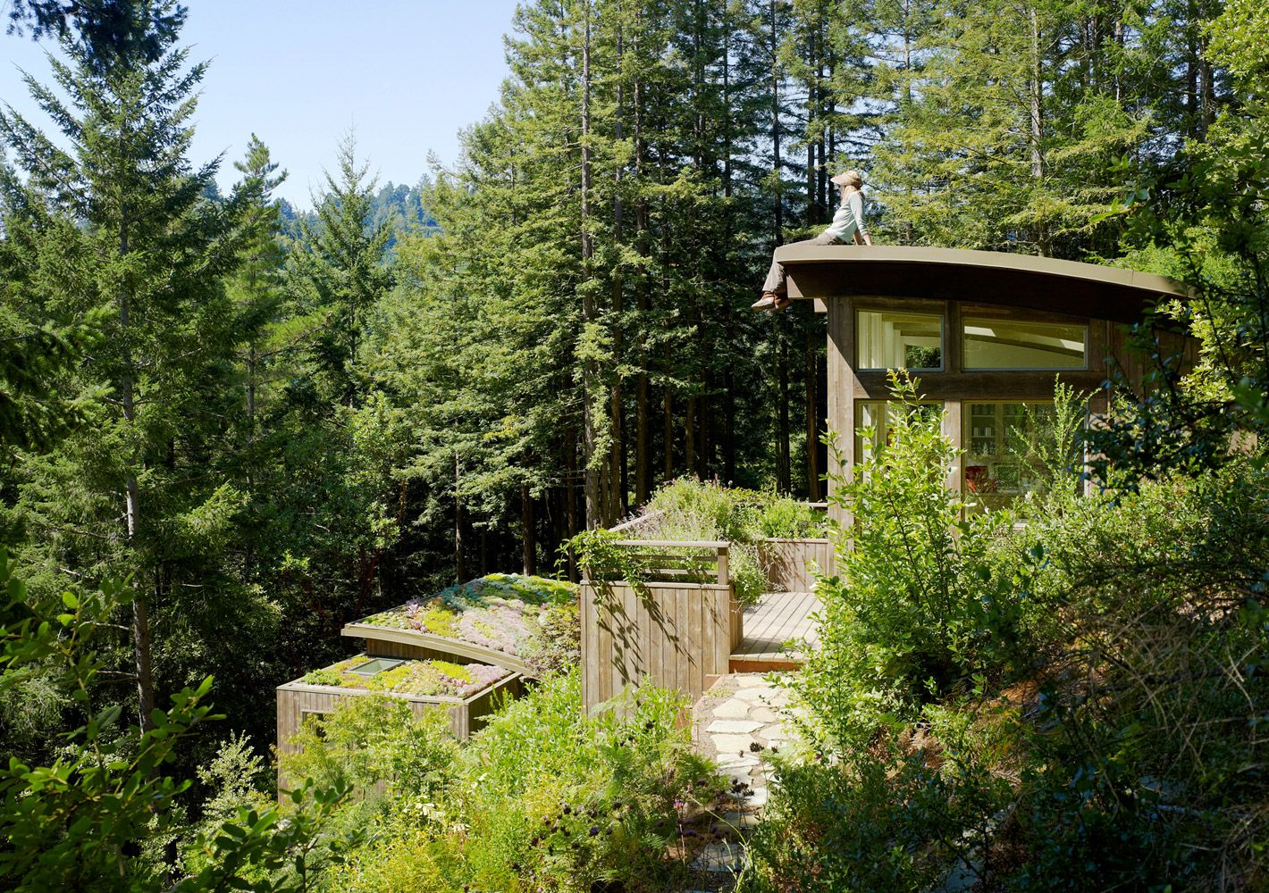Mill Valley Cabins California Feldman Architecture Residential And Commercial Architecture And Design Green Roof Roof Architecture Mill Valley