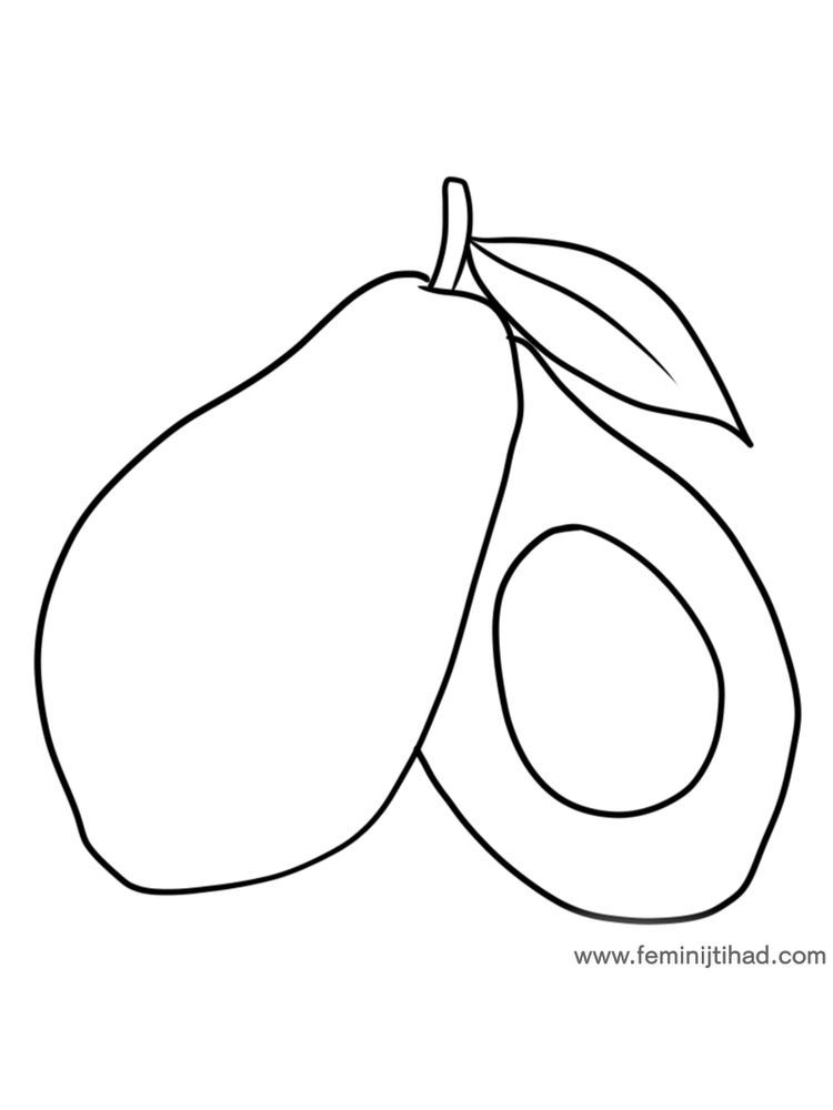 Avocado Coloring Page Print Dengan Gambar