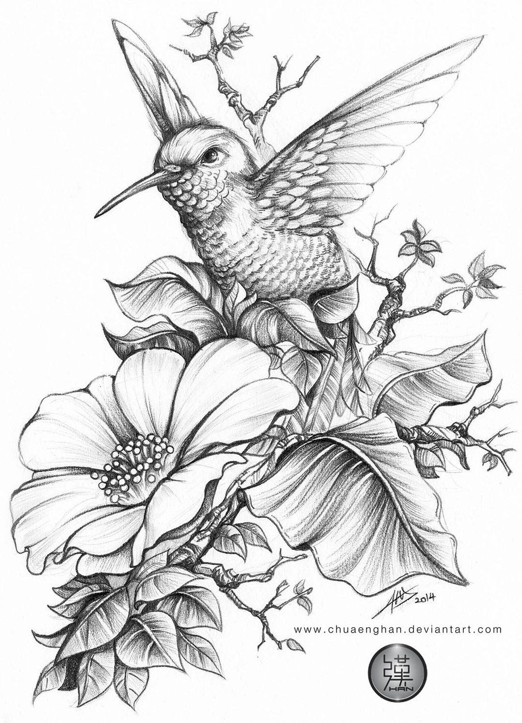 Hummingbird by chuaenghan on DeviantArt | Coloring Pages | Pinterest ...
