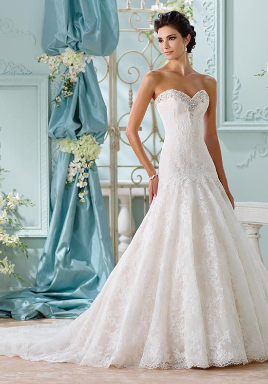 Strapless allover Venise lace over memory taffeta A-line gown ...