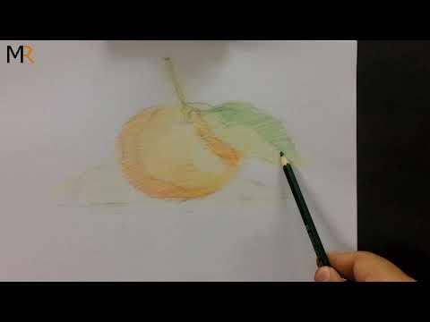 تعليم رسم البرتقال تحضير الوان المرحله الاوله للتلوين Mr Fine Artist تعليم الرسم Youtube