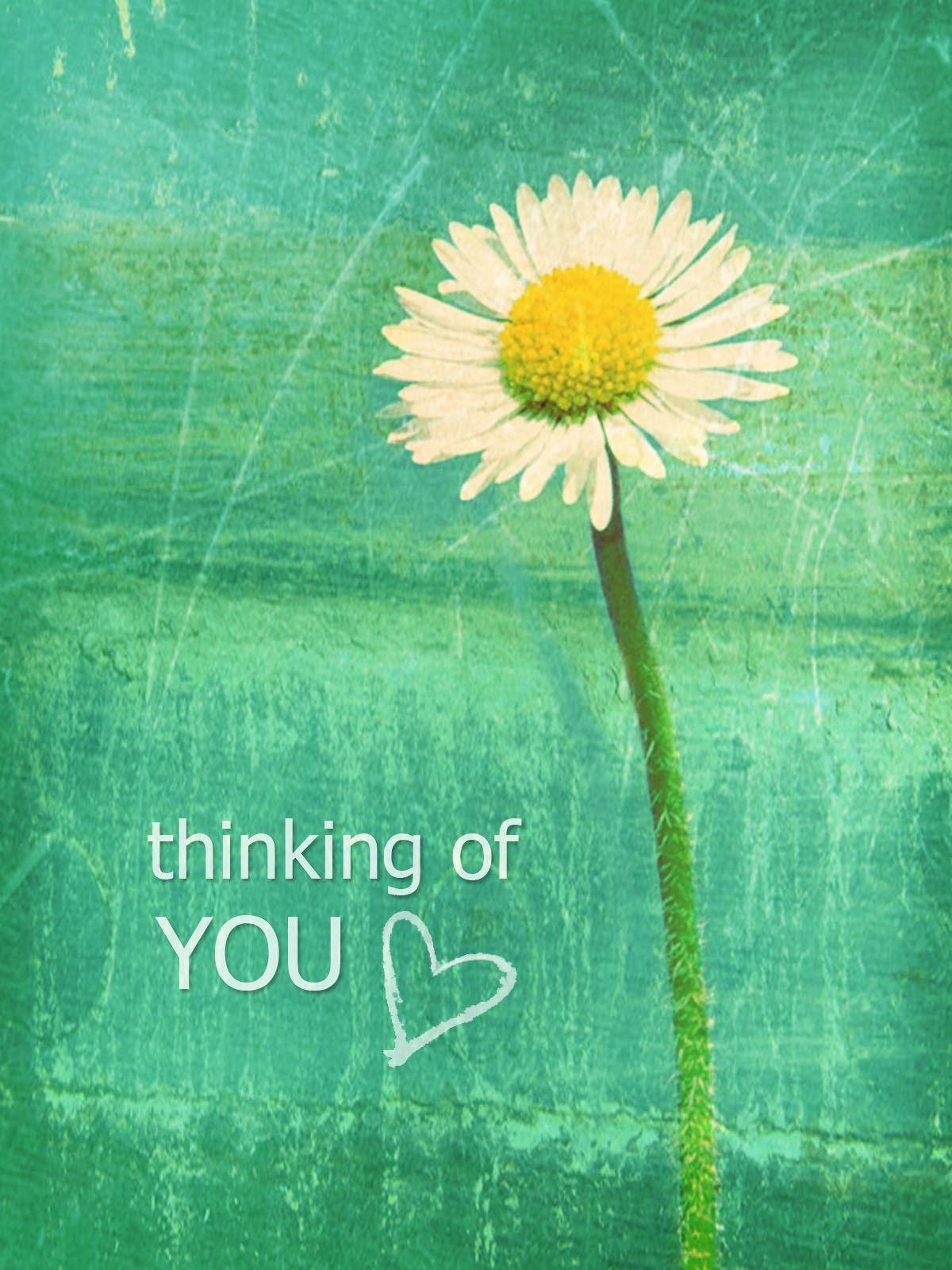 Thinking Of You Thinking Of You Quotes Sympathy Thinking Of You Quotes Thinking Of You Images