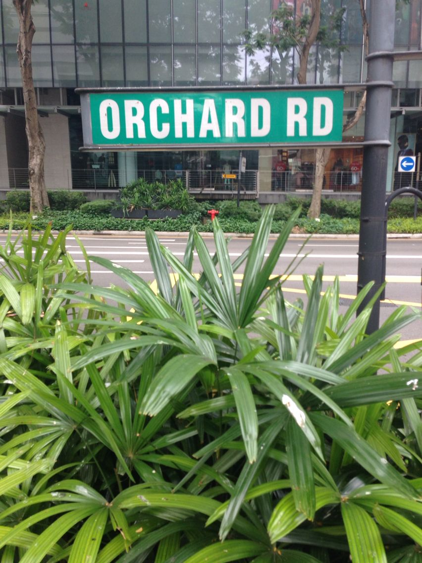 Orchard Rd Singapore City Favorite Places Highway Signs