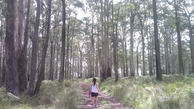 Guided walks in Daylesford