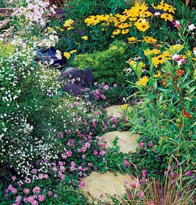 planting for butterflies and bees