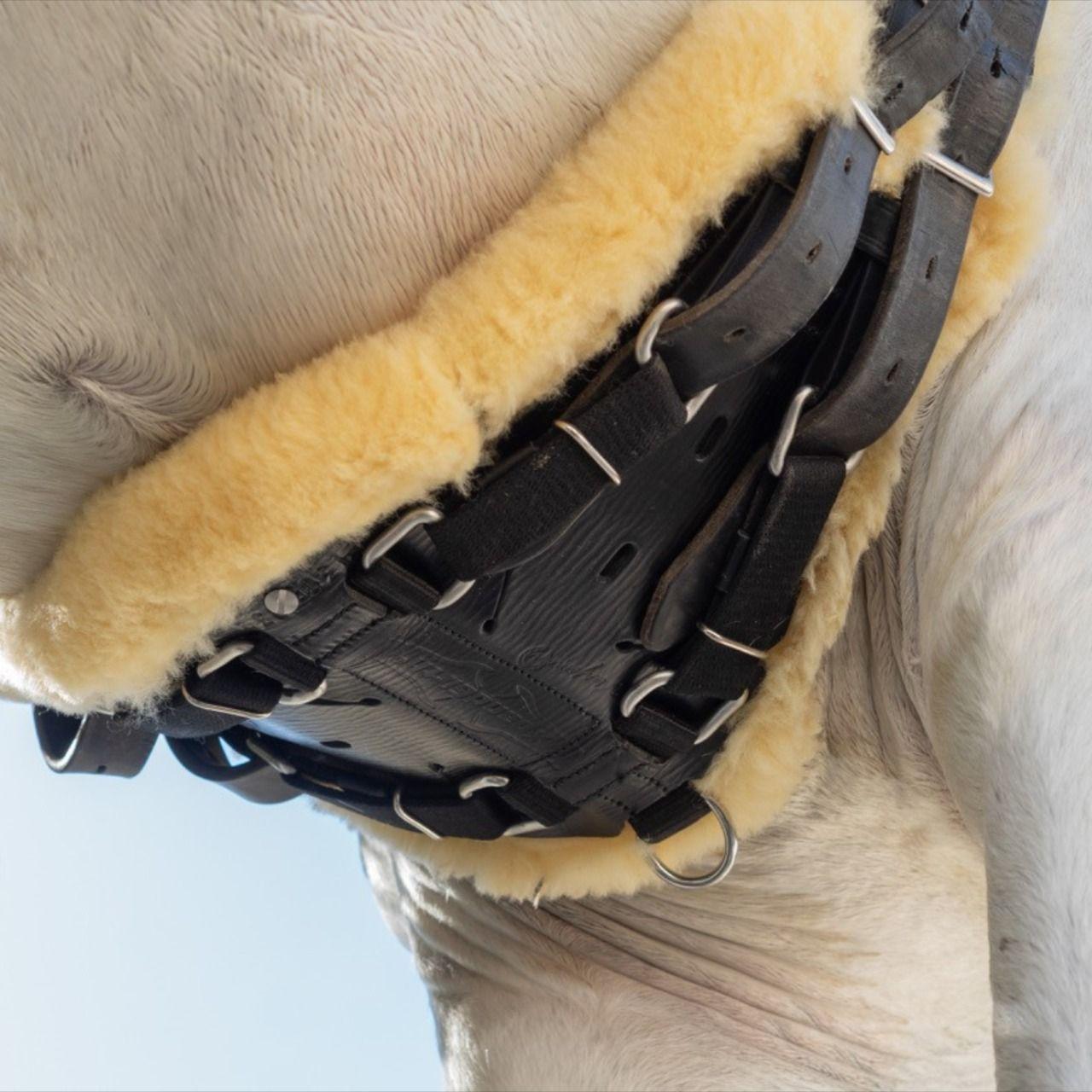 HKM mantilla para caballo print