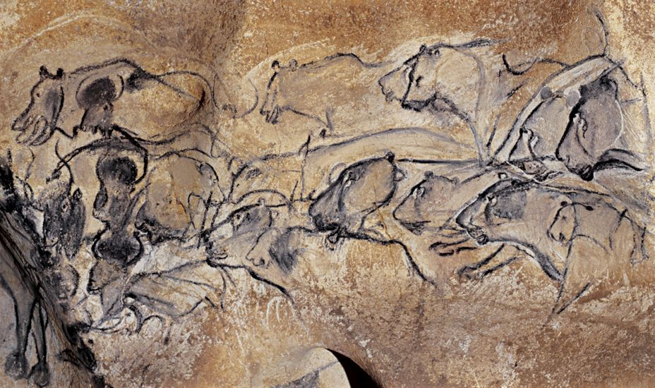 Lion Man Cave Art : The amazing year old drawings in chauvet cave