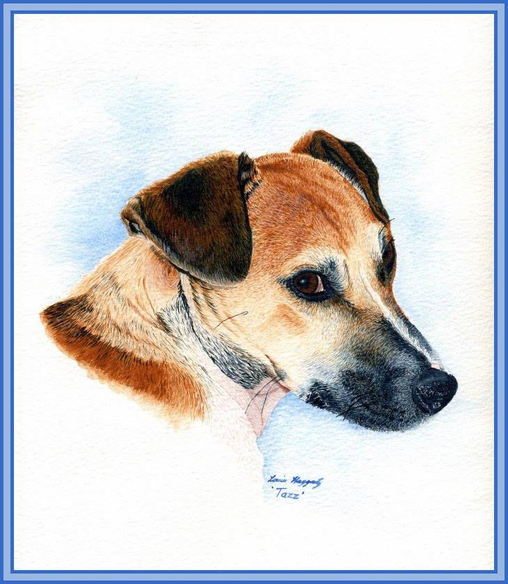 Watercolour painting of Tazz.