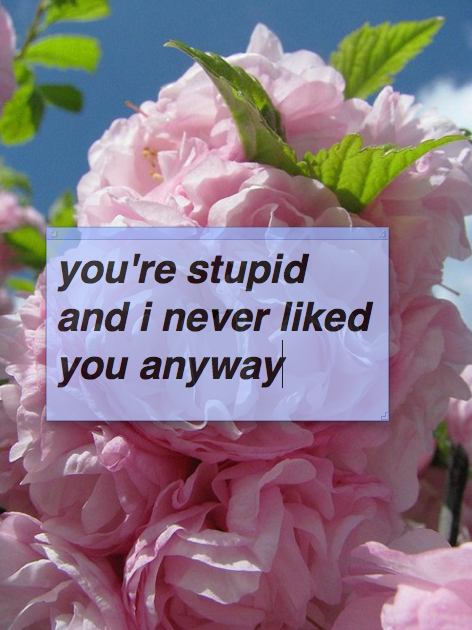 You Are Stupid And I Never Liked You Anyway Dont You Know I Love