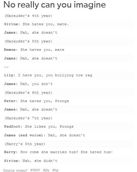 The Marauders And Lily Harry Potter Headcannons Harry Potter Jokes Harry Potter Memes