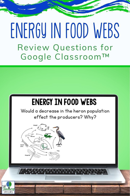 Pin on Energy in Food Webs