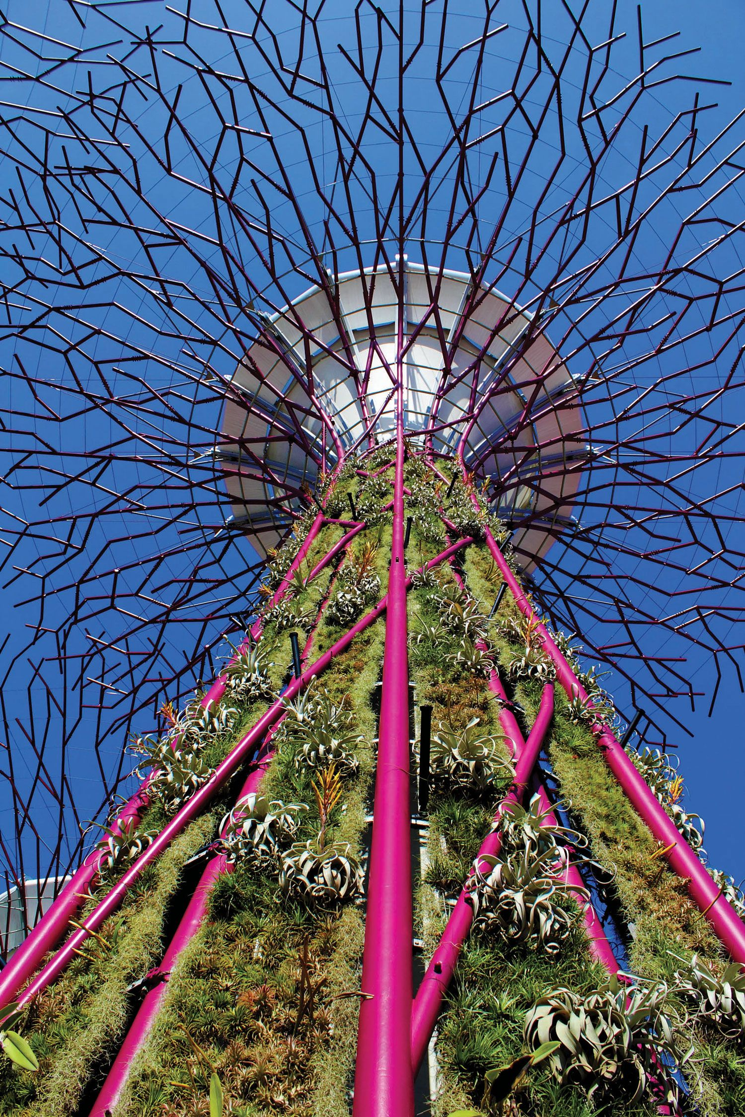 Gardens by the Bay Supertrees Singapore garden