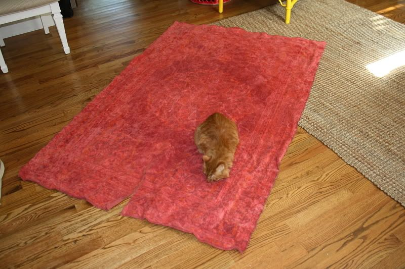 One More Over Dyed Rug Diy, This One Is Technically Better, Dye Is Way