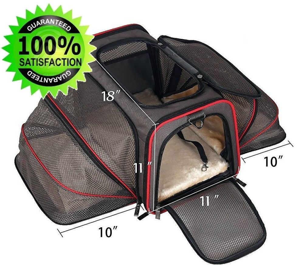 Southwest Airline Pet Carrier American Under Seat Jetblue Approved Airport Black Gatinhos E Cachorros Acessorios Para Caes Caes De Estimacao