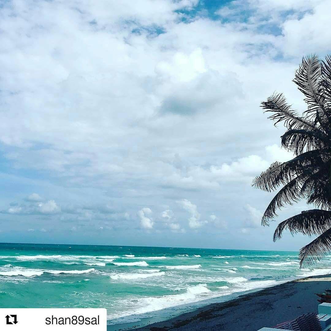 Credit to #shan89sal with @repostapp ・・・ #beach #ocean #whitecaps #cloudporn #palmtrees   #windy #cocktails #oceanview #oceanside .  .  .  #HollywoodTapFL #HollywoodFlorida #HollywoodFL #HollywoodBeach #DowntownHollywood #Miami #FortLauderdale #FtLauderdale #dania #daniabeach #Aventura #Hallandale #hallandalebeach #Pembrokepines #miramar #broward  (at The Diplomat Beach Resort)