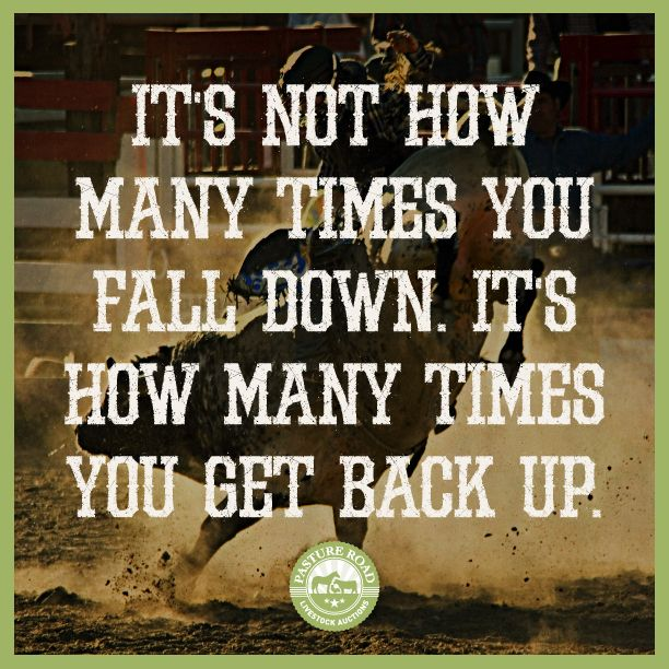 It S Not How Many Times You Fall Down It S How Many Times You Get Back Up Rodeo Cowboy Cowgirl Cowboyup Pas Horse Quotes Funny Funny Quotes Horse Quotes