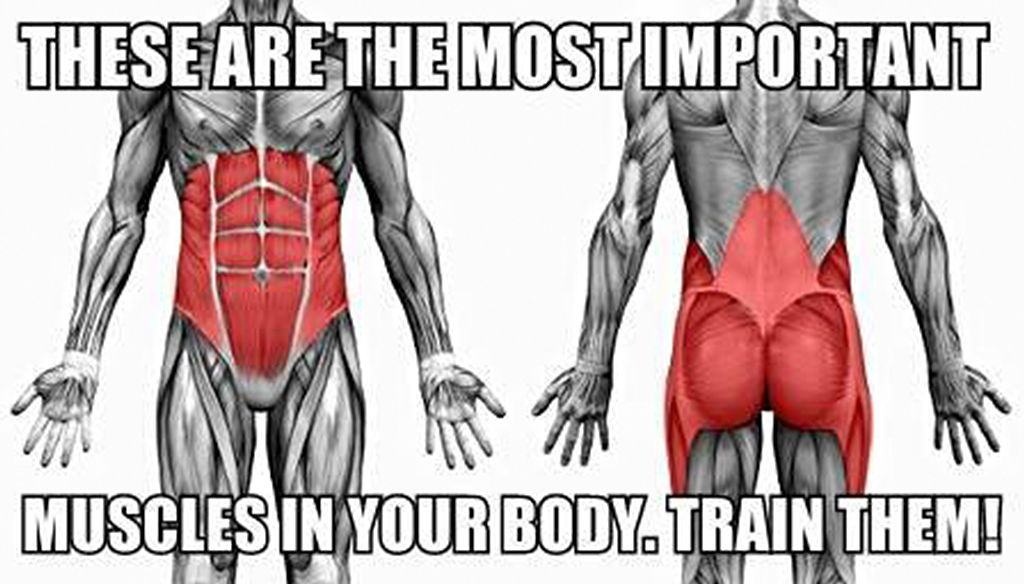Most People In The Gym Are Doing Chest Back Biceps Triceps And