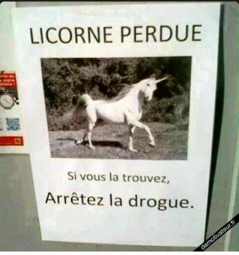 Licorne perdue