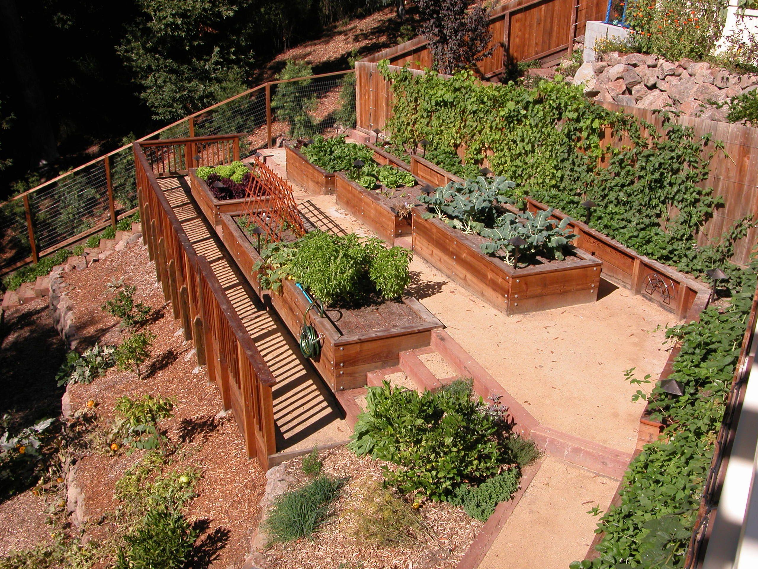 Carson Kitchen Garden 2 Raised Beds Hillside Garden Sloped