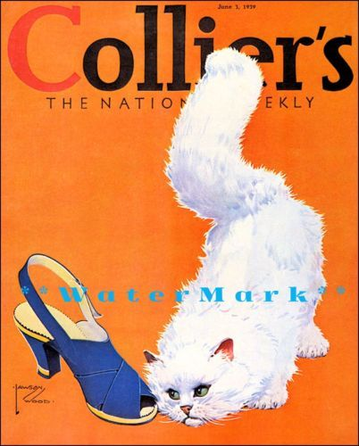 Art Poster: #FreeShipping Colliers 1939 Fashion Cover White Cat Art Vintage Poster Print Retro Style