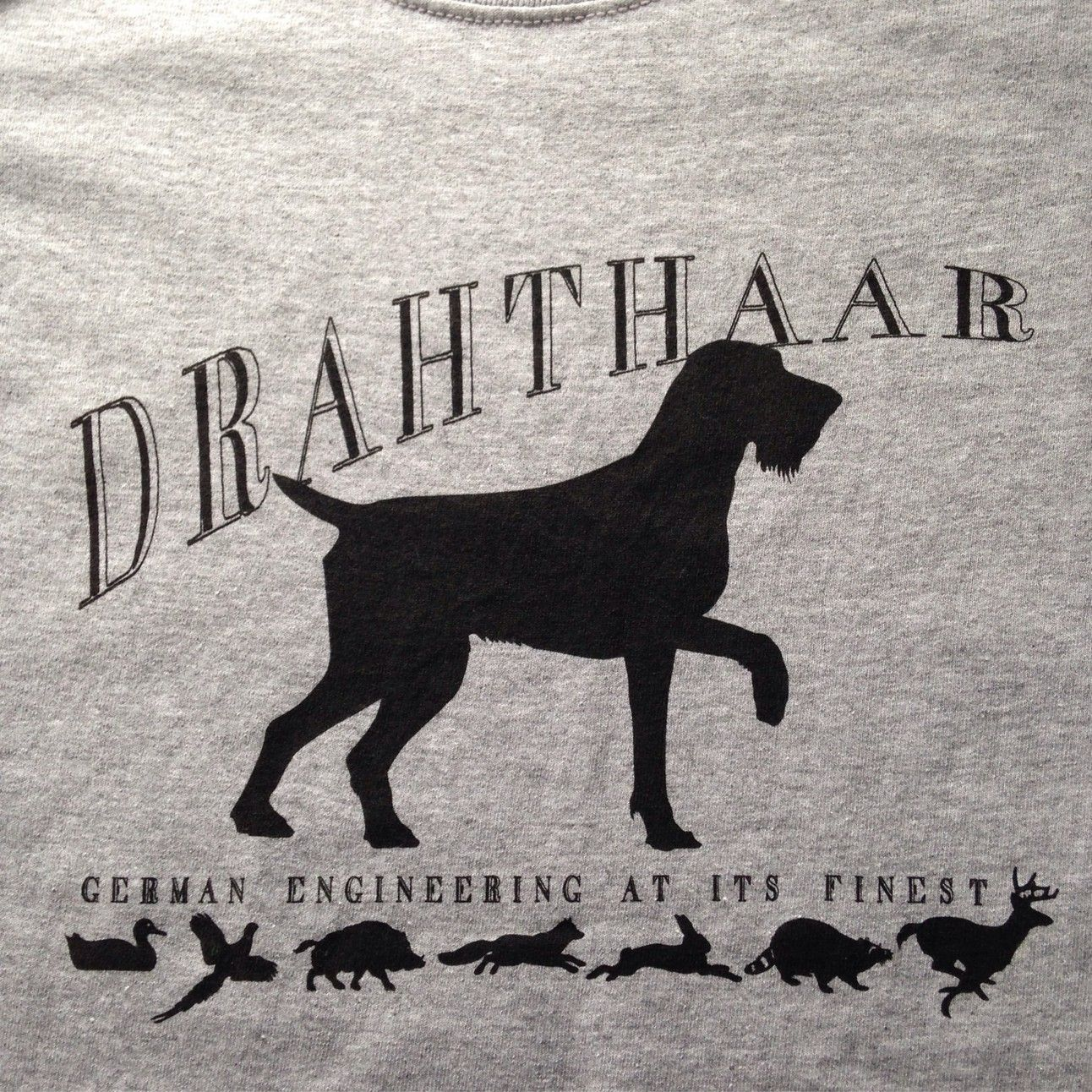 DD stuff | Draht dogs | Pinterest | German, Dog and Pointers
