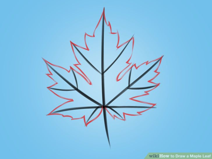 How To Draw A Maple Leaf Maple Leaf Drawing Leaf Drawing Leaf Drawing Easy